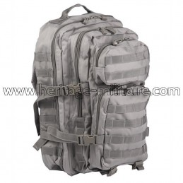US assault backpack foliage