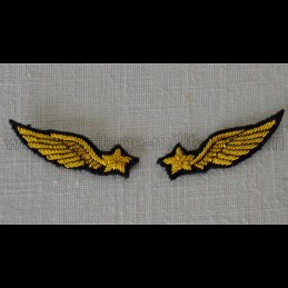 Embroidered badge of neck...