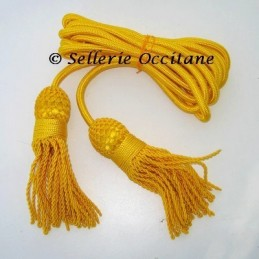 Cordon for bugle or flagpole