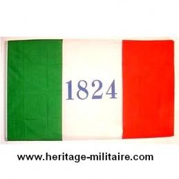 Fort Alamo battle flag