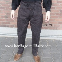 Pants 3079