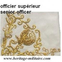 Gants en cuir à crispins brodés pour officier