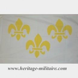 White flag 3 heraldic lily