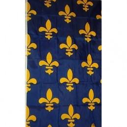 Blue flag 23 heraldic lily