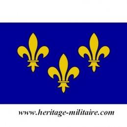 Blue flag 3 heraldic lily
