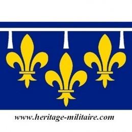 Drapeau d'Orléans