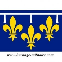 Flag of Orleans