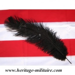 Black ostrich feather