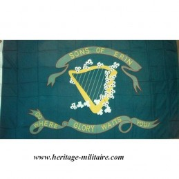 Sons of Erin flag