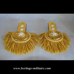 Officer parade shoulder scales golden with fringes 1832 - 1871 USA